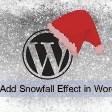 How to Add Snowfall Effect in WordPress